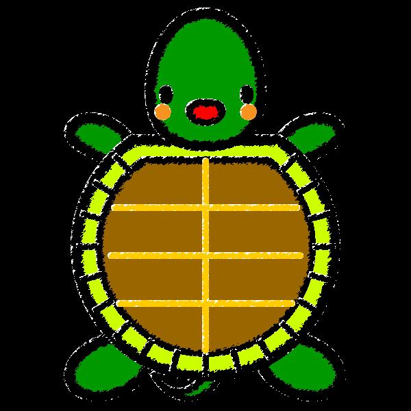 tortoise_01-handwrittenstyle