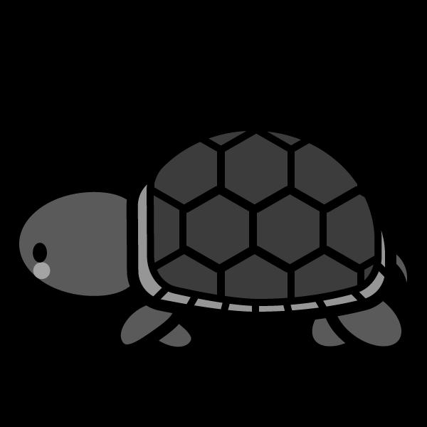 tortoise_01-side-monochrome