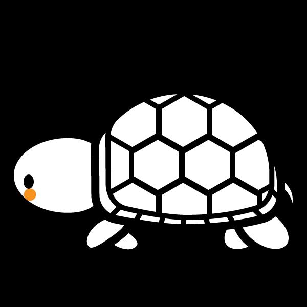 tortoise_01-side-white