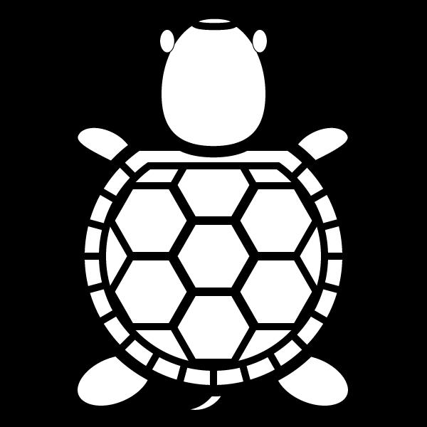 tortoise_01-top-blackwhite