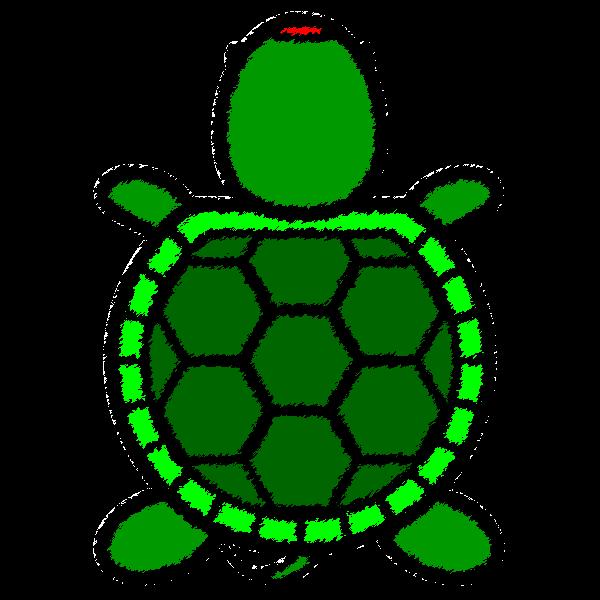 tortoise_01-top-handwrittenstyle