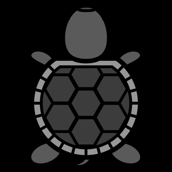 tortoise_01-top-monochrome