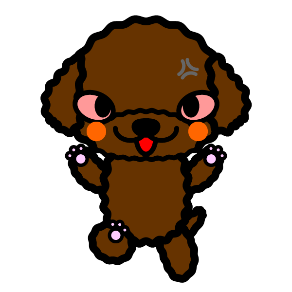 toy-poodle_angry