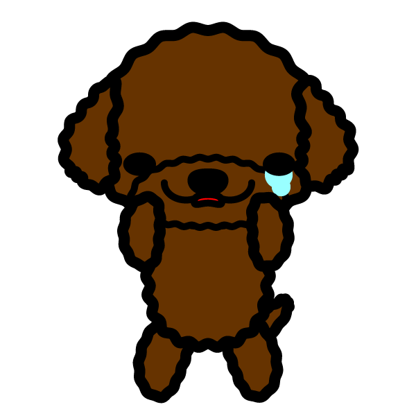 toy-poodle_sad