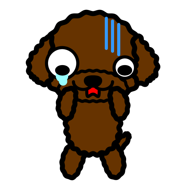 toy-poodle_shock