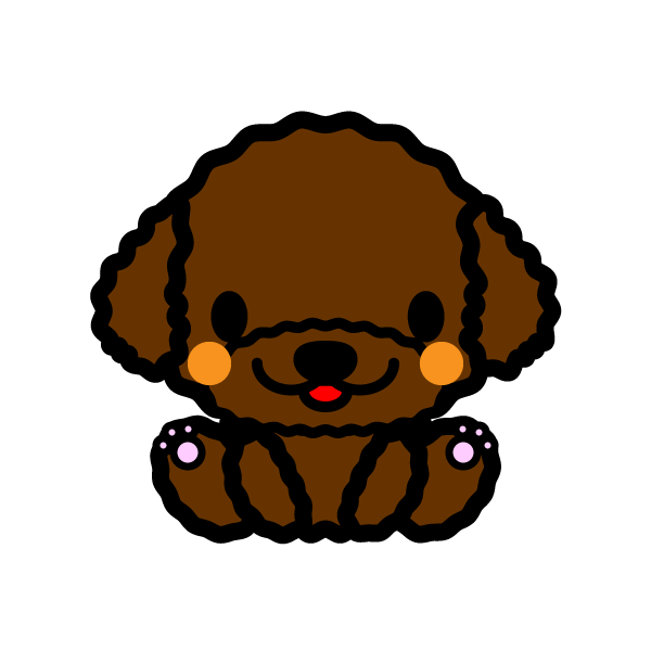 toy-poodle_sit