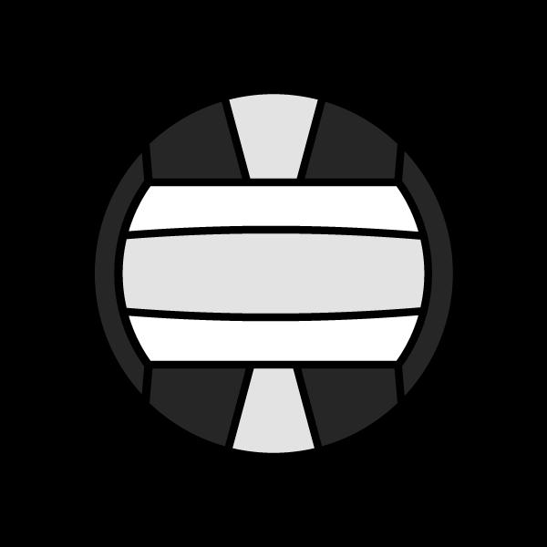 volleyball-o_ball-monochrome