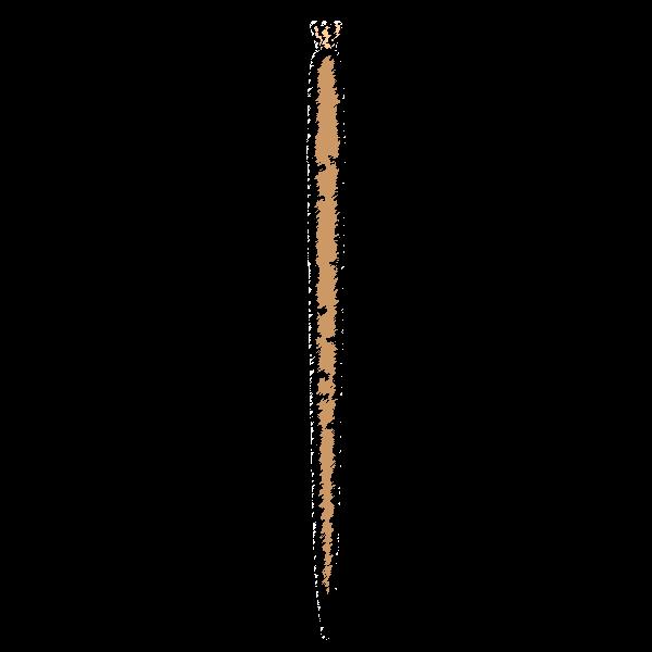 手書き風でかわいいごぼうの無料イラスト・商用フリー