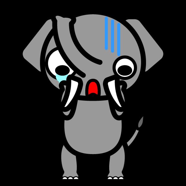 elephant_shock