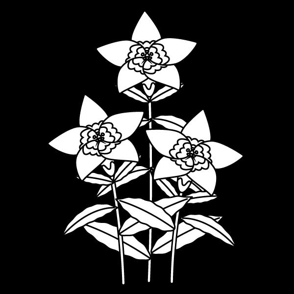 塗り絵に最適な白黒でかわいいりんどうの無料イラスト・商用フリー
