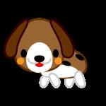 beagle-dog_side-soft
