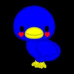 bird_blue-lucky-soft