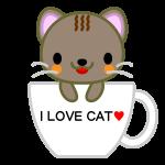cat_cup-soft