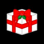 christmas-ornament2_box-soft