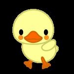 duck_child-side-soft