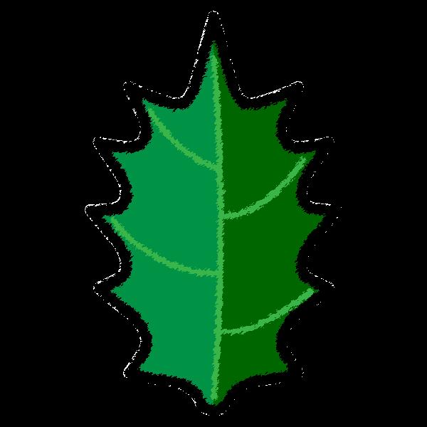 手書き風でかわいいヒイラギの葉っぱの無料イラスト・商用フリー