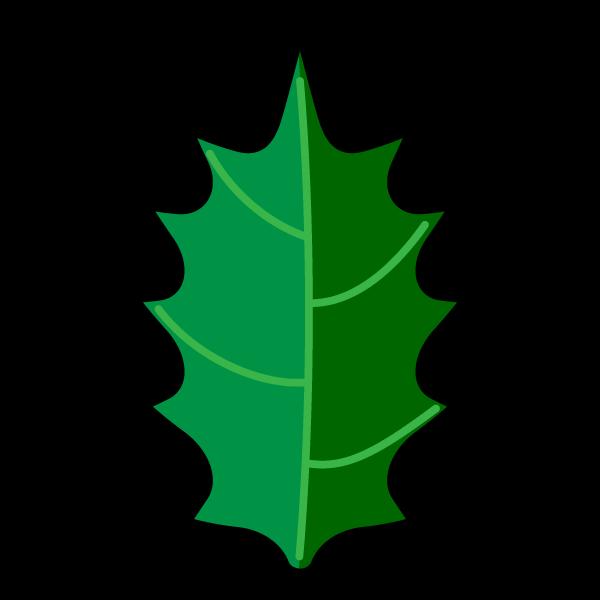 かわいいヒイラギの葉っぱの無料イラスト・商用フリー