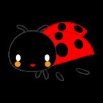 ladybug_01-side-soft
