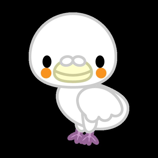 ソフトタッチでかわいい白い鳩の無料イラスト・商用フリー