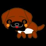tosa-dog_side-soft