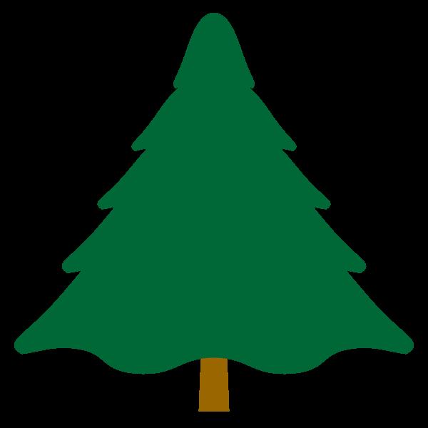 tree_fir-nonline