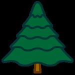 tree_fir-soft