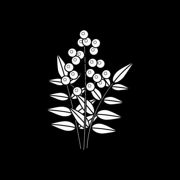 塗り絵に最適な白黒でかわいい南天の無料イラスト・商用フリー