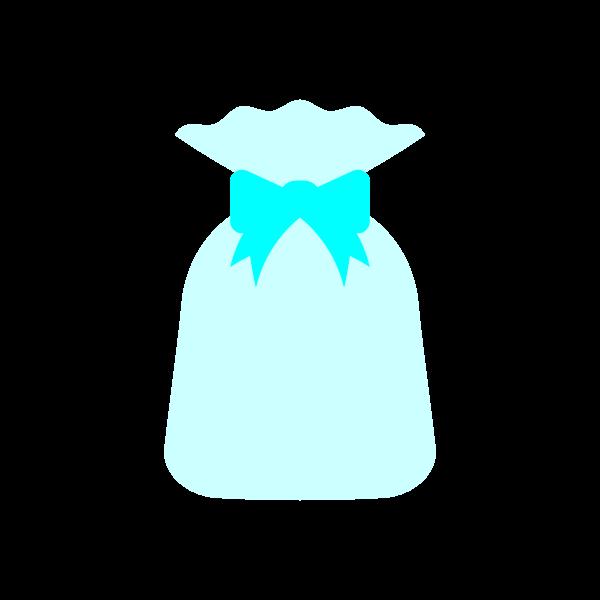 present2_bag-lightblue-nonline