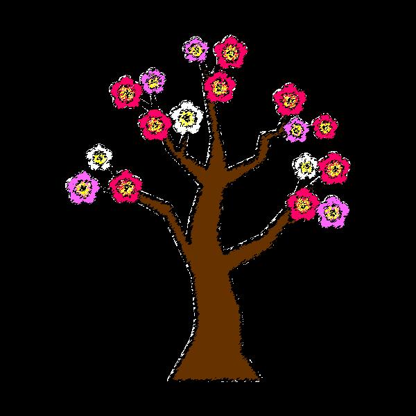 手書き風でかわいい梅の木の無料イラスト・商用フリー